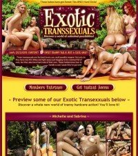 Exotic Transsexuals