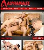 Alpha Males