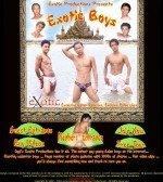 Exotic Boys
