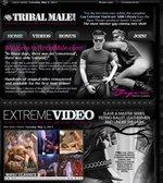 Tribal Male